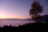 Foggy_Landscape_at_Dawn_2.jpg